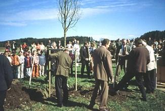 pflanzung der linde in 2004